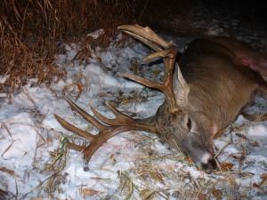 hunting 001